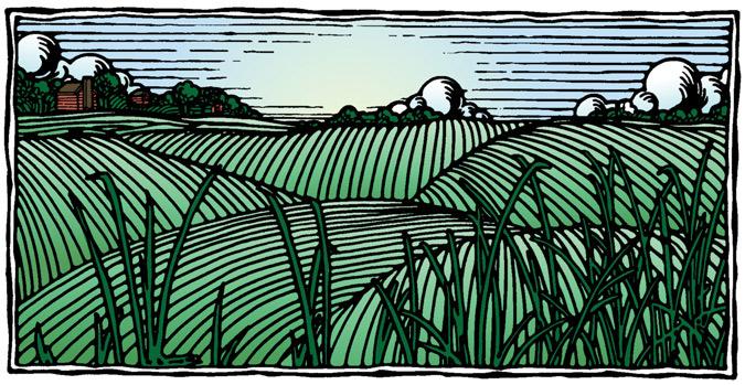 Landscape_Woodcut